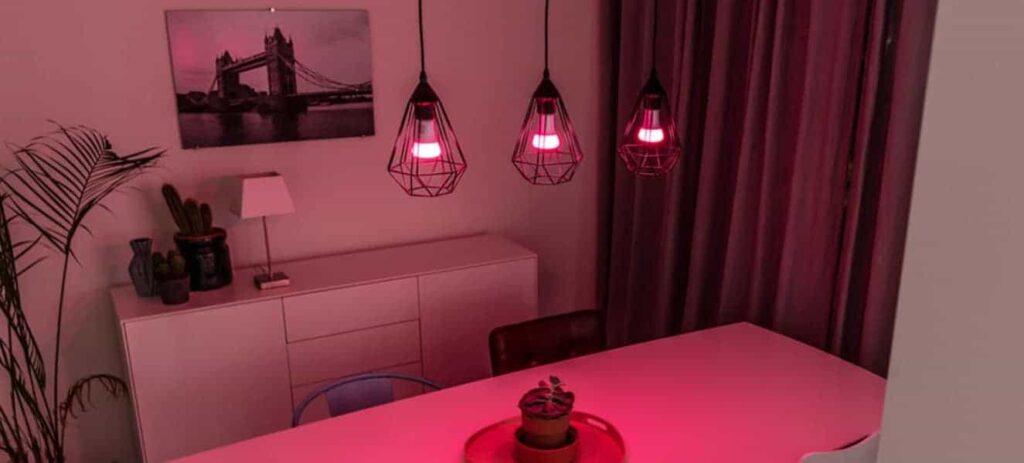 Welke lampen werken met Philips Hue?
